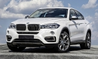 Гарант Форт BMW X6 /2015-/ ЭлГУР